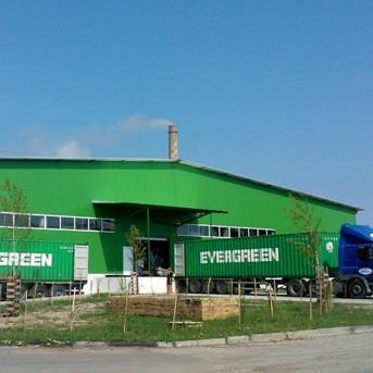 В завода за целулоза в Свищов работят стотици